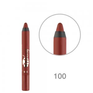 رژ لب مدادی ملونی 100