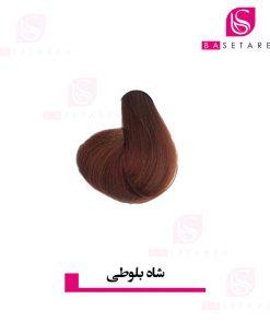 رنگ موی شاه بلوطی ایتالی رژ