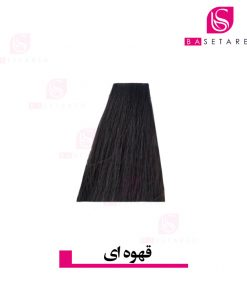 رنگ موی قهوه ای 4 وینکور