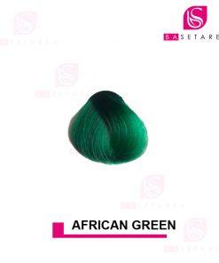 رنگ مو فانتزی AFRICAN GREEN استار گیزر