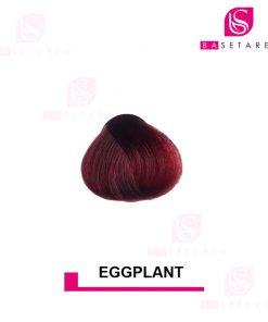 رنگ مو فانتزی EGGPLANT استار گیزر