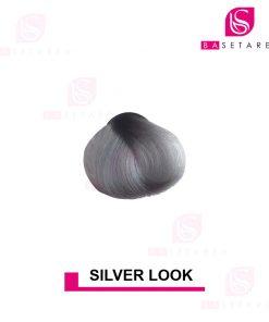 رنگ مو فانتزی silverlook استار گیزر