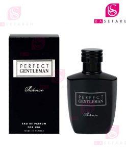 ادوپرفیوم مردانه آرت اند پرفیوم مدل Perfect Gentleman Intense حجم ۱۰۰ میل